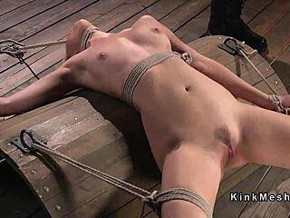 Teen Bondage Schreiend Anal